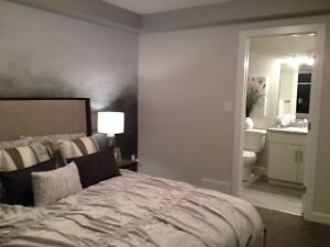 You and the Kids can enjoy a Developped basement  in Blackstone Strathcona County Edmonton Area image 7