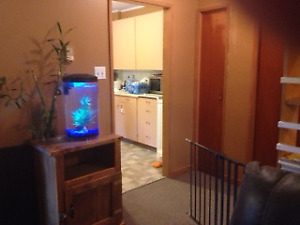 2 bedrooms apartment available July 1