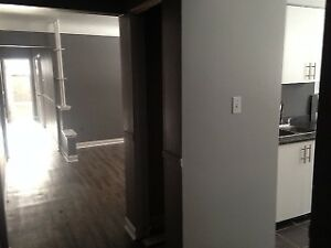 2 Bedroom Refurbished Apartments :: Fennell & Upper Ottawa