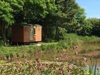 Luxury Shepherds Hut Ideal for a Romantic Break or Mini Moon.