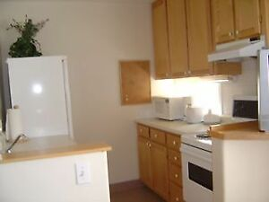 BRIGHT FURNISHED 1 BEDROOM on DAL CAMPUS near SEXTON, SMU, IWK