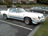 LOOKING FOR 1980 - 1981 CAMARO Z28 4SPEED
