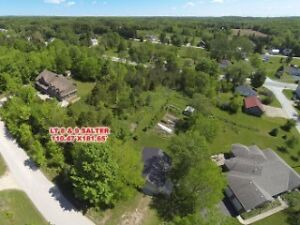 Large Lot in Williamsford - Awaiting your Dream Home!