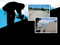 Flat Roofer / Driver Needed ASAP