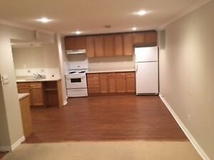1 bedroom apartment Newmarket, Large