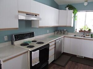 Stove and sink for sale