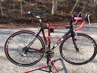 Road bike Eclipse Full carbon Light weight Ultegra components