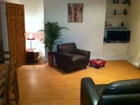 Nice size city centre room to rent short term.