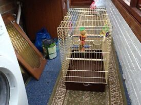 LARGE GOLD BIRD CAGE