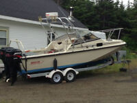 22'boston whaler revenge wt