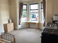 Large Double Room / Bedsit available