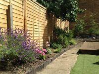 3 bed victorian in London seeking 2 bed with garden in Essex or Hertfordshire