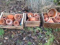 Clay plant pots various sizes good condition
