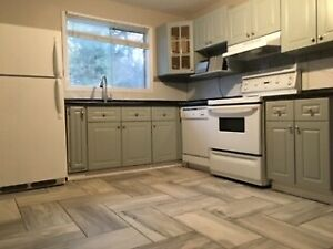 Beautifully renovated 4bed 1bath unit in duplex north end