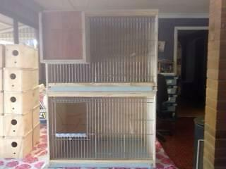 BREEDING CABINET / CAGE / BUDGIE / FINCH Upper Caboolture Caboolture Area Preview