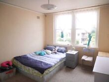 Fantastic Master Bedroom for Rent in Kingsford UNSW Daceyville Botany Bay Area Preview