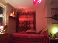 Large Double Room With En-Suite Bathroom Near Brick Lane To Let Over Christmas & New Year!