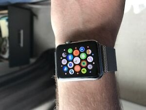 42mm Apple Watch Stainless Version with Milanese Loop