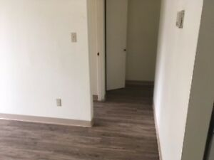 Cranbrook one Bedroom Apartment for rent