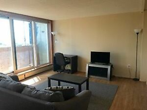 Large, bright & beautiful 3 Bedroom Apartment for just $1350