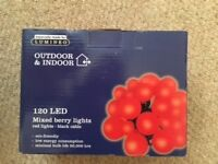 Outdoor & Indoor Mixed Berry 120 LED Lights