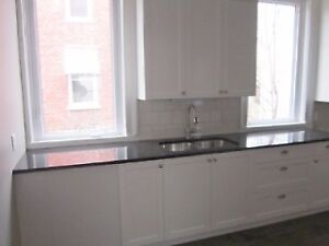 Renovated 2 Bedroom Downtown Main Unit