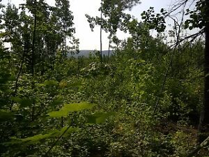 Acreage/camp land 4 sale in Anagance between Sussex&Petitcodiac