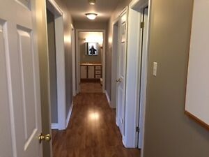 Available immediately Beautiful 2 bedroom apartment in CBS
