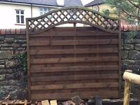 Two Fence Panels with Arched Trellis Top