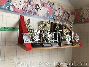 Trophies And Shelf A