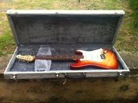 guitar flight case aluminium BARGAIN!