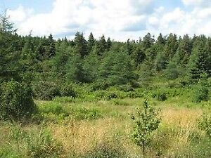 Land For Sale in Brigus Watch|Share |Print|Report Ad