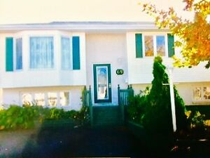 3 Bedroom House - Available Dec. 1st St. John's Newfoundland image 1
