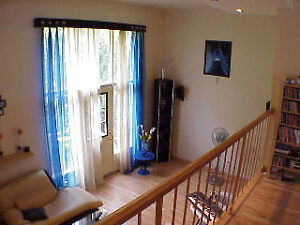 3 level townhouse with open concept and yard London Ontario image 3