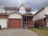 Beautiful One Bedroom Legal Basement Apartment! ALL INCLUSIVE!