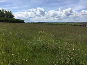 bare land acreage NW of Calgary.