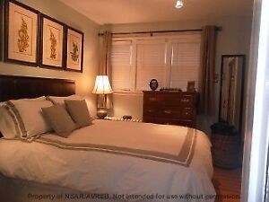 Cheerful 1 Bedroom Apartment - South End Halifax