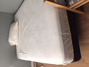 Room in Old Hull for rent