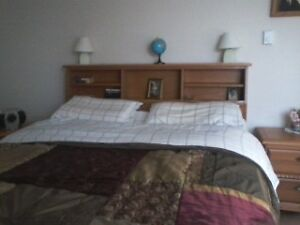 Bed with Book Case Headboard