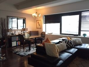 Downtown  Furnished short or long term -available now