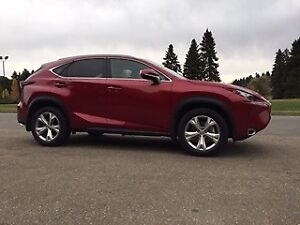2015 Lexus NX 200t Executive Package SUV, Crossover