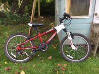 Children's Janis X20 bicycle