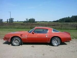 1977 Pontiac Trans Am T/A 6.6 Original