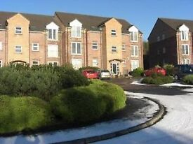 Spacious two bed top floor apartment minnowburn mews overlooking countryside Shaws Bridge / Malone