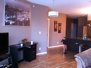 Roommate Needed - 2bed/bath condo downtown! Fully Furnished!