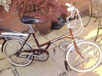 Dawes Kingpin Bicycle