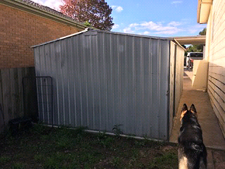 Garden Sheds 2m X 2m garden shed 1.5 x 0.8 x 2m (one only) | sheds & storage | gumtree