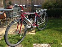 Mountain bike - Giant ALM 1