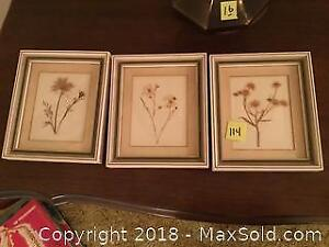 Framed Dried Flowers A