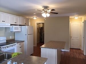 Ground floor two br apt with washer is available in November.1st
